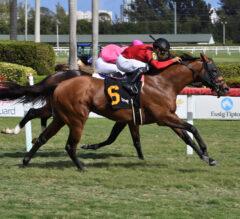 Favorites Leinster, Mischevious Alex Take Twin Gulfstream Park Sprints