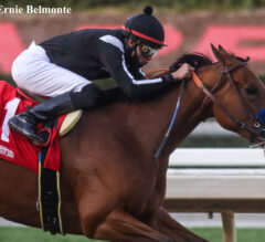Merneith Wins Santa Monica On Front End