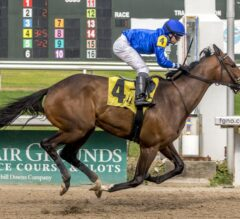 Kentucky Derby Contenders Pedigree Analysis: Proxy