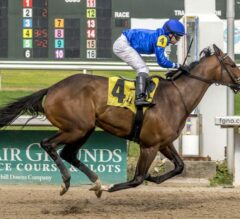 Lexington Preview: Proxy in Search of First Stakes Victory