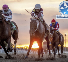 Racing Dudes 2021 Risen Star Wagering Guide and Picks Presale
