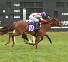 Domain Expertise Nails Joster In Florida Oaks
