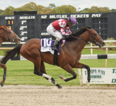 Helium, Three Other Tampa Runners Step Up Kentucky Derby Preparations