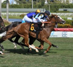 Annex Nails Fulmini To Win Cutler Bay