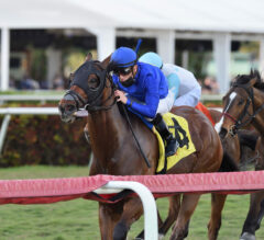 Carotari Defends Silks Run Title