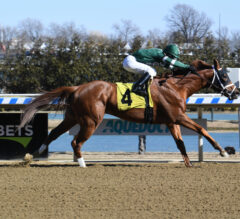 Pletcher Has Wood Memorial In Mind For Dynamic One, Overtook