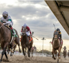Hot Rod Charlie Wires Louisiana Derby