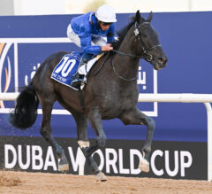 Godolphin's Mystic Guide Conquers The World