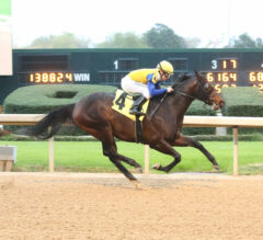 Heavy Favorite Tempt Fate Leaves No Doubt In Nodouble