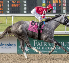 Favored Travel Column Flies In Fair Grounds Oaks