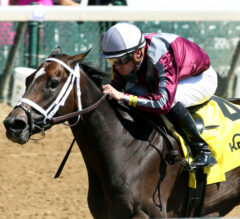 Australasia Puts Undefeated Streak On The Line In Jersey Girl