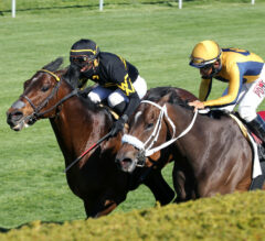 Racing Dudes Three Stars of the Week: Keeneland Returns, Derby Trail Tossed Asunder