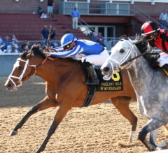 Papa Dude's Free Oaklawn Picks For Sunday 4/11/21