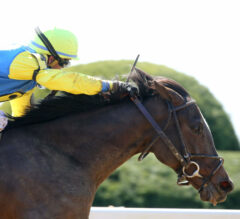 Carribean Caper Tops Dogwood, Two Stakes Debut At Churchill Downs Saturday