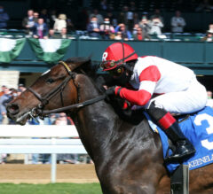 Everyone Vainly Chases Artie in Palisades Turf Sprint