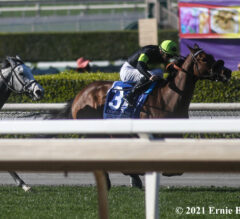 Charmaine's Mia Goes Gate to Wire in Royal Heroine