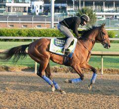 Baffert's Concert Tour Joins Derby Winner Medina Spirit in Preakness Stakes