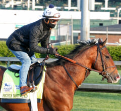 Kentucky Derby Contenders Pedigree Analysis: Highly Motivated