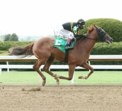 Ward Duo Averly Jane, Kaufymaker Formidable in Kentucky Juvenile