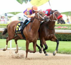 Racing Dudes Three Stars of the Week: Sun Shines Bright at Oaklawn