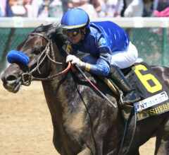 Maxfield Bounces Back with Alysheba Victory
