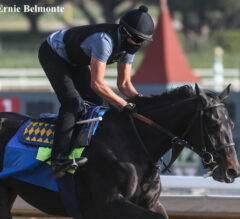 Three Kentucky Derby 2021 Longshots Who Could BLOW UP the Superfecta