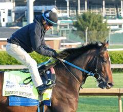 Midnight Bourbon Confirmed for Preakness, Irad Ortiz Jr. to Ride