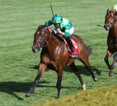 Woodbine Mile Preview: Raging Bull Returns For Another Spar