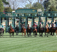 Bewitch Preview: Dozen Runners Offer Price Potential on Keeneland's Closing Day