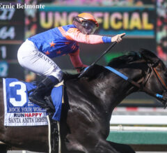 Rock Your World Rocks the Trail with Santa Anita Derby Victory