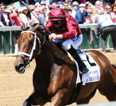Shedaresthedevil Denies All Challengers, Wins La Troienne