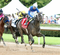 Kentucky Derby Contenders Pedigree Analysis: Super Stock