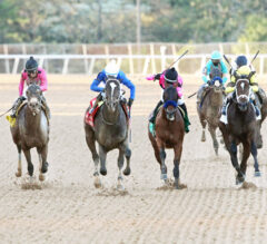 Racing Dudes Three Stars of the Week: Kentucky Derby Trail Ends in Shocker