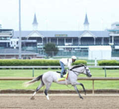 Why We HATE Your Kentucky Derby Pick – 2021 Edition
