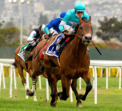 Invader Whisper Not Edges Local Hero Keeper Ofthe Stars in San Francisco Mile