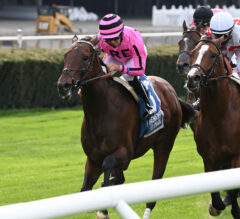 Casa Creed Wins Blanket Finish in Elusive Quality