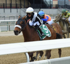 Shaker Shack Shook Off the Competition in NYSSS Park Avenue