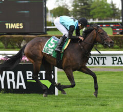 She's My Type Earns Black Type with License Fee Score
