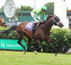 Calumet Turf Cup Preview: Arklow Looks To Continue Kentucky Downs Success