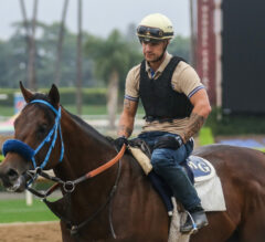 Green Flash Preview: Collusion Illusion Makes Turf Debut
