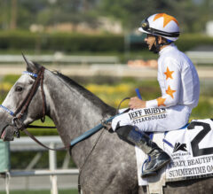 Delaware Oaks Preview: Crazy Beautiful Hits The Northeast