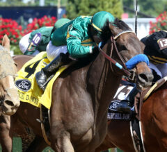 Flagstaff Goes For Third Consecutive Stakes Win in True North