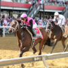 Last Judgment Goes Gate to Wire in Pimlico Special