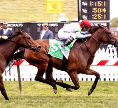 Mean Mary Makes Connections Happy in Gallorette