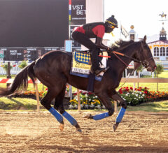 Baffert Trained Horses Pass First of Three Drug Tests
