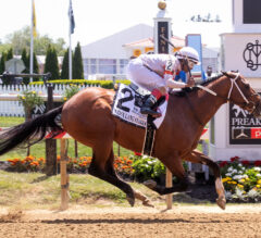 Mighty Mischief Makes the Grade in Chick Lang