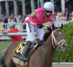Rombauer Roars Past Midnight Bourbon to Win Preakness