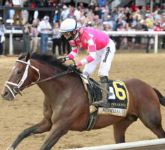 Belmont Stakes Preview: Triple Crown Trail Comes to a Close at Big Sandy
