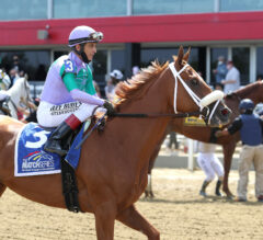 Spice Is Nice Becomes Stakes Winner in Allaire du Pont