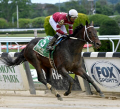 New York-Breds Shine on Special Memorial Day Card at Belmont Park